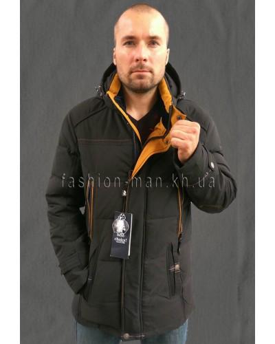 Зимняя куртка 8719