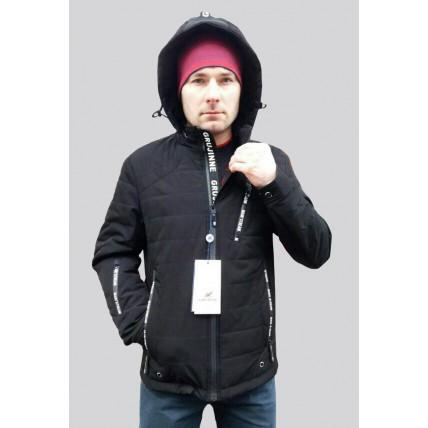 Мужская демисезонная куртка V-1011